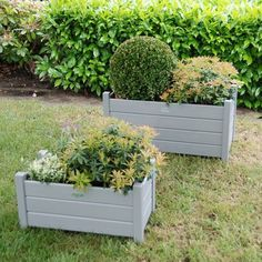 Fallen Fruits Set of 2 Rectangular Planters – Next Day Delivery Fallen Fruits Set of 2 Rectangular Planters from WorldStores: Everything For The Home Wooden Planter Boxes Diy, Concrete Planter Boxes, Rattan Planters, Concrete Plant Pots, Plastic Planter Boxes, Plastic Plant Pots, Planter Box With Trellis, Self Watering Plants, Fallen Fruits