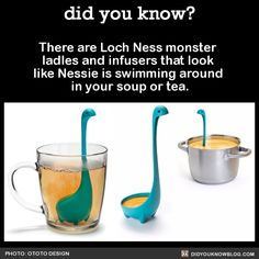 There are Loch Ness monster ladles and infusers that look like Nessie is swimming around in your soup or tea.  Source