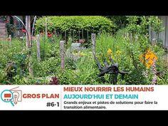 Le journal de BORIS VICTOR : MA FRANCE INSOUMISE - Gros Plan #6-1 - Mieux nourr...