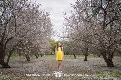 Birch, Plants, Garden, Blog, Photography, Fotografie, Gardens, Photo Shoot, Plant