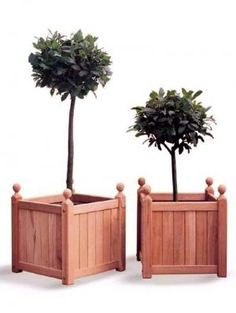 Versailles Mahogany Cube Planter as seen on Alan Titchmarsh Love Your Garden