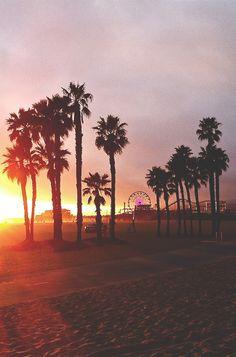 Summer sunset sky beach ocean outdoors park fun palm trees sand pier