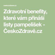 Zdravotní benefity, které vám přináší listy pampelišek - ČeskoZdravě.cz