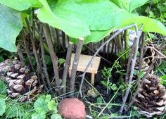 Inspiration in Your Own Backyard :: Fairy Houses & Crowns  by Alexandra White