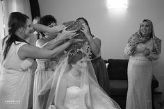 Wedding Photography by Tehnicolor Wedding Day, Wedding Photography, Couple Photos, Couples, Wedding Dresses, Fashion, Pi Day Wedding, Couple Shots, Bride Dresses