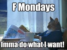 F Mondays Imma do what I want! - Rich cat is rich - quickmeme