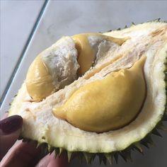 ทุเรียนสายพันธุ์ มาวซานหวัง 猫山王 หรือมูซานคิง **รสชาติ เนื้อเหนียว มัน หวาน กิโลล่ะ500บาท** ที่สวน อ.ธารโต จ.ยะลา Line: Piroontip http://line.me/ti/p/m2JqtZKmng #durian @durian @ทุเรียน #ทุเรียน @ต้นทุเรียน
