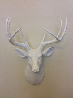 Faux Deer Head. Hunting Trophy with Antlers. Taxidermy Whitetail Stag that is Found and Souled