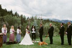 perro-matrimonio-3