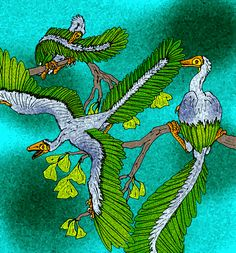 Archaeopteryx lithographica by avancna on DeviantArt