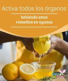 Activa todos los órganos bebiendo estos remedios en ayunas La manera de empezar el día es fundamental para que nos sintamos con energía y vitalidad desde primera hora de la mañana.