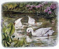 Jemima Puddle-Duck 3 ~ Beatrix Potter ~ Counted Cross Stitch Pattern #StoneyKnobFarmHeirlooms #CountedCrossStitch