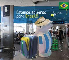 Pingüino viajando a Brasil