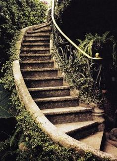 Ancient Garden Stairs, Tuscany, Italy photo via pilgram by ines