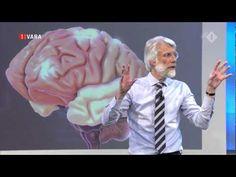 Het Brein deel 2 De Wereld Draait Door University met Prof. dr Erik Scherder (FullHD) - YouTube