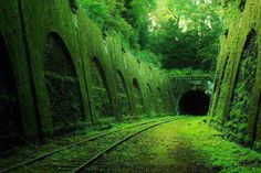 8: Abandoned railroad in France | Beauty Among The Ruins: See Some of the Worlds Most Beautiful Abandoned Places | Co.Create: Creativity  Culture  Commerce