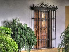 "https://flic.kr/p/oWa8d   Just a window....   Hacienda ""El Lencero"", Xalapa, Veracruz MEXICO"