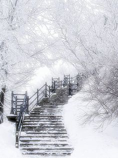 ❥ snowy stairs