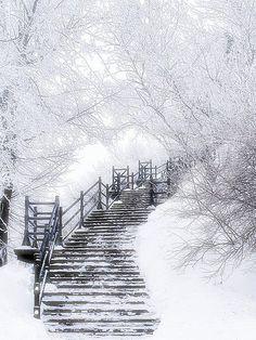 Wer weiß wohin uns diese Stufen führen...