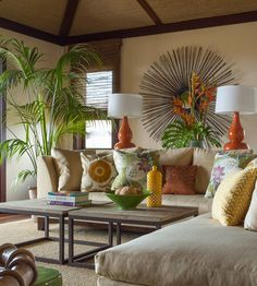 kentia palms make for beautiful indoor plants
