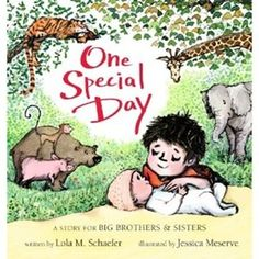 "One Special Day: A Story for Big Brothers and Sisters by Lola Schaefer, Illustrated by Jessica Meserve. ""Spencer undergoes a remarkable transformation from a wild and raucous boy to a gentle big brother in a joyful, tender story sweetly illustrated for ""big brothers and sisters."""" -Ala.org"
