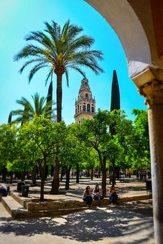 Courtyard of Mosque–Cathedral (Mezquita) of Córdoba Spain