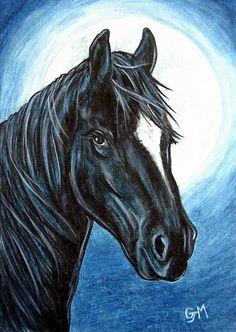 Black Horse in Blue Moonlight Art Original 5 x 7 Colored Pencil Art by AllKindsofArt artist Glenda Mullins