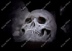 A scary spooky goth skull photo available in any size. Perfect for a Halloween party or for a spooky fun Halloween gift!