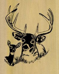 Scroll Saw Patterns To Printable | 07-A1-6 - Trophy Whitetail Deer Downloadable PDF Scroll Saw Pattern