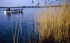 A boat on the peaceful waters of Lough Neagh, Northern Ireland | On the Seamus Heaney trail in Northern Ireland