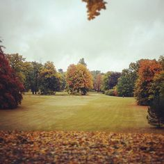 New photo online #autumn in #potsdam - friday it is almost #weekend  Hope you like it