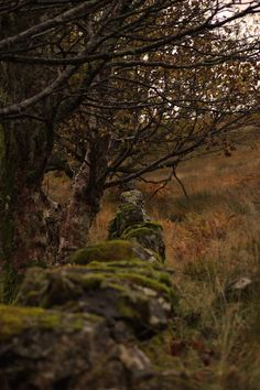 the west highland line show you some amazing areas to photograph