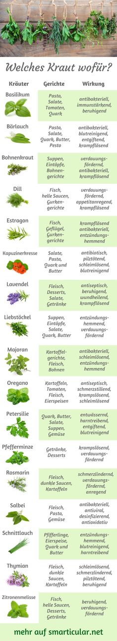 ABC: Which herb for what, what fits for what? -Kitchen herbs ABC: Which herb for what, what fits for what? -herbs ABC: Which herb for what, what fits for what? -Kitchen herbs ABC: Which herb for what, what fits for what? Best Smoothie, Metabolic Workouts, Mozarella, Full Body Hiit Workout, Sauce Barbecue, Kitchen Herbs, Kitchen Racks, Fitness Design, Fast Metabolism