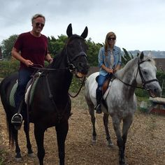The horses knew when to smile at the camera. #Equestrian #ZumaFarms #Malibu #SayCheese #ScottYancey