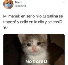 Funny True Quotes, Funny Memes, Jokes, Funny Spanish Memes, Spanish Humor, New Memes, Love Memes, Ugly Meme, Cute Couple Comics