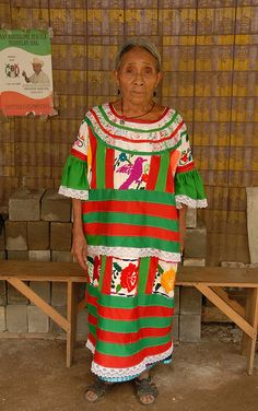 This Mazatec woman from a small town in the north of Oaxaca wears a beautiful huipil. She is a skilled embroiderer as are her daughters Mexican Embroidery, Mexican Art, Small Towns, North America, Christmas Sweaters, Textiles, Daughters, How To Wear, Regional