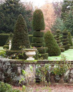 Trudie Proctor's garden
