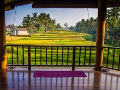 Yoga Ubud: A detailed guide to the best yoga studios in Ubud, Bali plus Ubud yoga retreats, ashrams, hotels with free yoga classes, and where to find the cheapest classes. Fully updated in 2018.