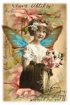 Fairy 2 Simply D Rave