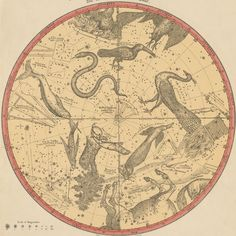 The Constellations for Each Month of the Year - Atlas of the Heavens, Elijah Burritt 1856