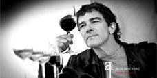 Wines from Antonio Banderas, Bodega Anta Banderas