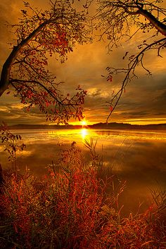 Sunset on Mauthe Lake Wisconsin, photo by Phil Koch