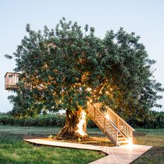 Conversas de Alpendre (Vila Nova de Cacela, Algarve) Verified Reviews | Tablet Hotels Beautiful Tree Houses, Wine Chateau, Air Tent, Portugal, Treehouse Hotel, Country Hotel, Cabin In The Woods, Countryside, Tiny House