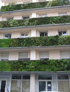 Vertical garden on outside of balconies // Patric Blanc