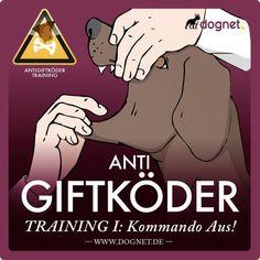 Lektion 1: Dem Hund beibringen auf Kommando etwas auszuspucken