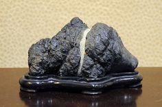 Image from http://dupuich.smugmug.com/Bonsai/Exhibits/GSBF-XXXIII-Convention-Exhibit/DSC0083/1086267606_aEzuR-S.jpg.