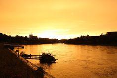 Goldener-Rhein