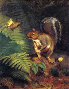 squirrel & butterfly. //  William Holbrook Beard