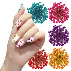 Nail Art Decoration 3D Dry Dried Flowers