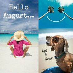 Hello August August Baby, Hello August, Summer Months, Months In A Year, Lions, Winnie The Pooh, Life Is Good, Summertime, Seasons